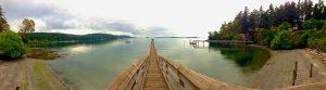 Olga Dock
