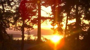 Waldron Sunsets