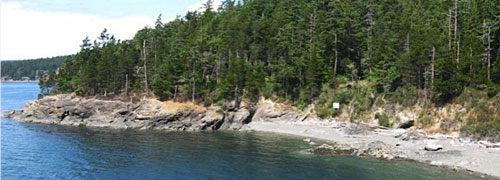 orcas shoreline
